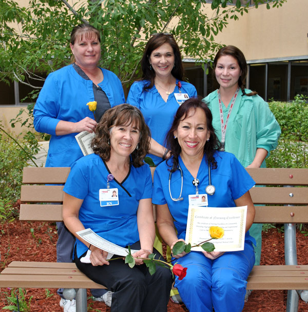 Nurses recognized by State organization for Service Excellence